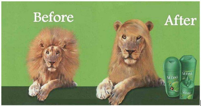 ejemplo del humor en anuncios publicitarios