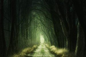 como vencer el miedo a lo desconocido